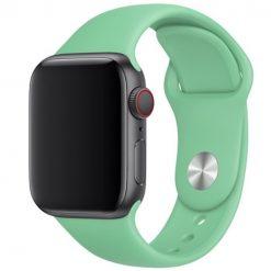 Silikonrem för Apple Watch 42/44 mm - Mint
